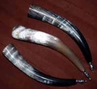 Sound horns 38cm length from Cow horns rustic finish, tin trumpet mouth piece and screw-in plug