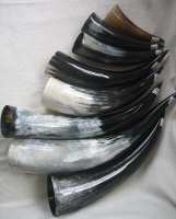 Viking Drinking Horns various sizes 50ml - 700ml top view